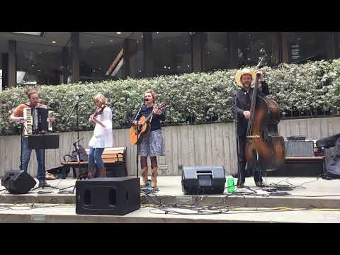 The Viviants Bluegrass Music :: 2018 SF Summer Music Festival