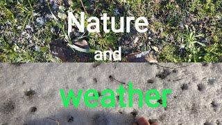 """Topic """"Nature and weather"""" 🌦️ Природа и погода."""