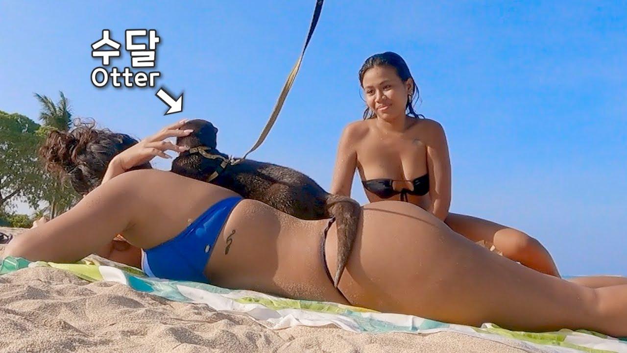 처음본 사람 등에 올라탄 수달|Otter Climbs on the Back of a Person She's Never Seen Before