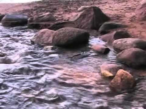 Причины болезней. Какую роль играет вода для здоровья (1часть)