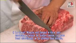 le boeuf japonais  Wagyu