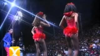 The Sacados, El bikini de lunares amarillos, Festival de Viña 1992 YouTube Videos