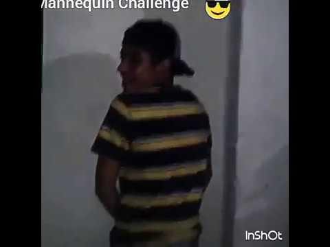 Mannequin challenge bogota colombia friends