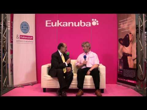 Dog rescue videos Interview 2 with Rafael de Santiago