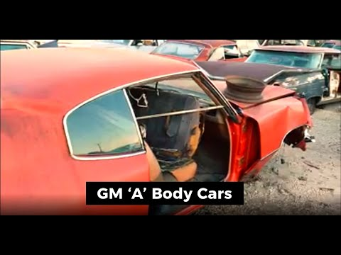 GM A Body - YouTube