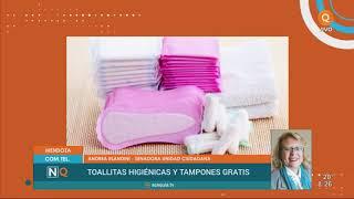 Toallitas hiegiénicas y tampones accesibles, efectivos y gratuitos