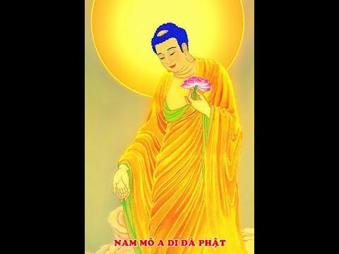 Nhạc niệm Phật không lời 4 âm - Tịnh Tông Học Hội