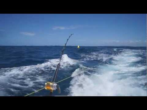Trolling A Lure Chain - Hookup On Dolphinfish