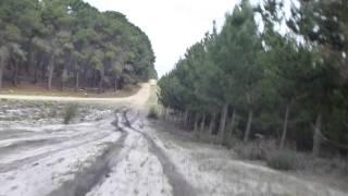Landcruiser V8 diesel Ute Exhaust Through Pines