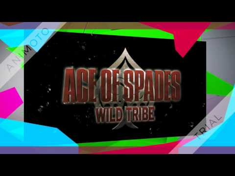 Ace Of  Spades  WILD TRIBE MusicVideo 花絮
