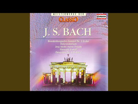 Die Kunst Der Fuge (The Art Of Fugue) , BWV 1080 (arr. For String Orchestra) : The Art Of...