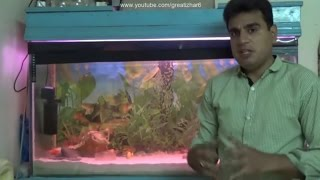 How to Change Aquarium Water | Gravel Cleaner for Fish Tank | Fish Tank Ka Pani Kese Change Karin