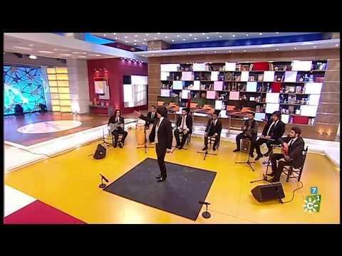 Manuel Fernández el Carpeta - Canal Sur Televisión
