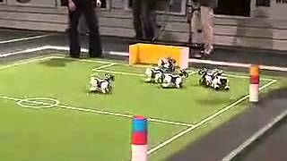 robot dog educational equipment