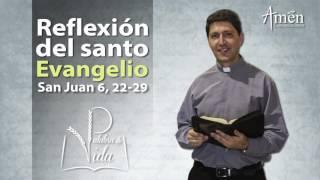 Palabra de Vida 1 de Mayo 2017 l Padre Carlos Yepes [OFICIAL]