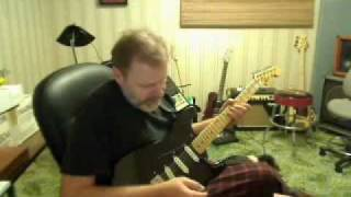 Fender Stratocaster: David Gilmour Black Strat Project