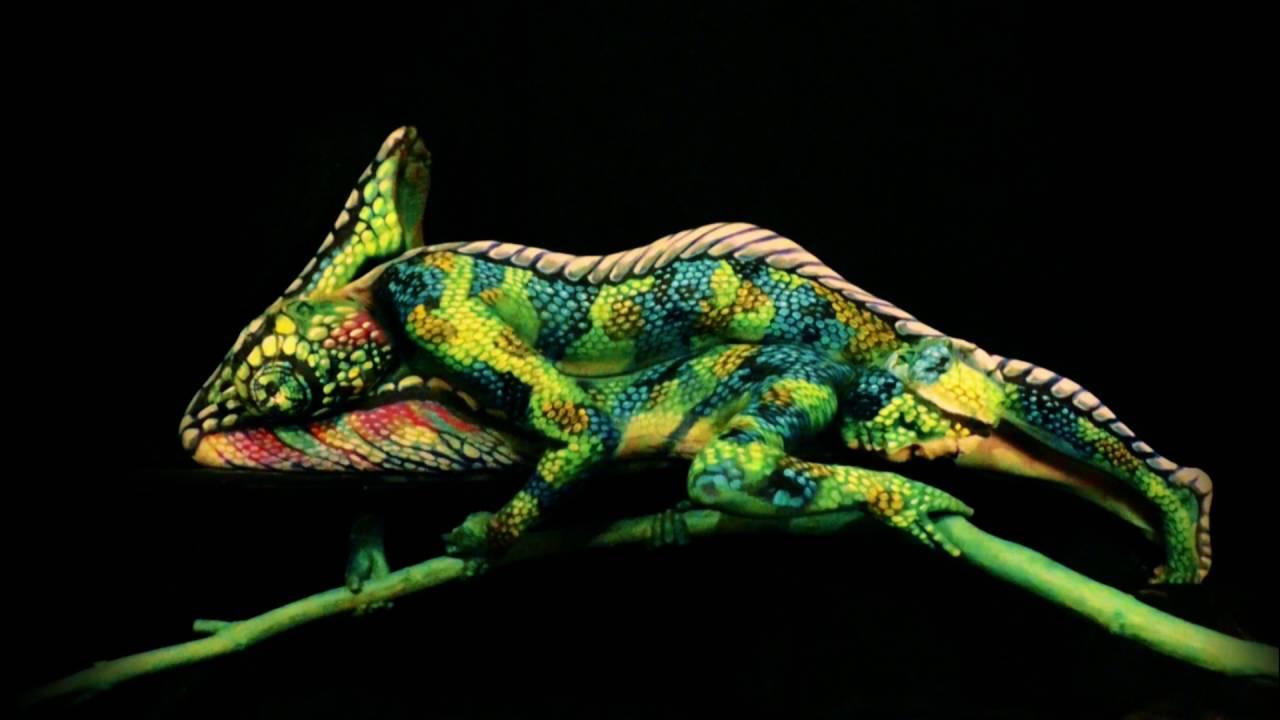 The Chameleon by WBProduction Artist Johannes Stoetter YouTube – Production Artist
