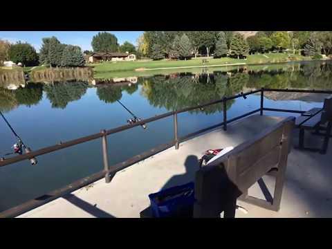 (Live Stream) Salem Lake Trout Fishing