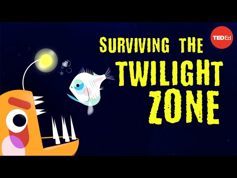 Video image: Could you survive the real Twilight Zone? - Philip Renaud and Kenneth Kostel