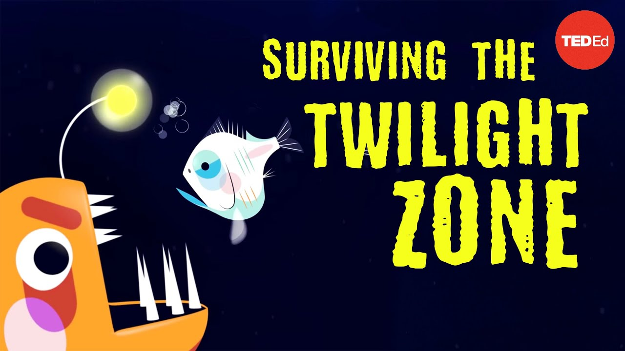 Could you survive the real Twilight Zone? - Philip Renaud and Kenneth Kostel