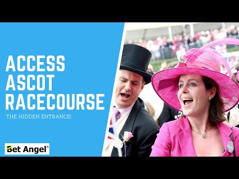 Peter Webb - Bet Angel - The 'unofficial' way of accessing ascot racecourse