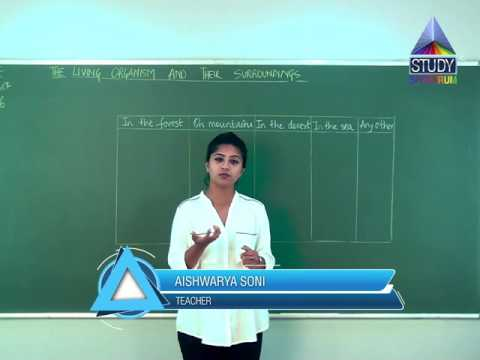 CBSE 6 Science The Living Organisms and their surroundings