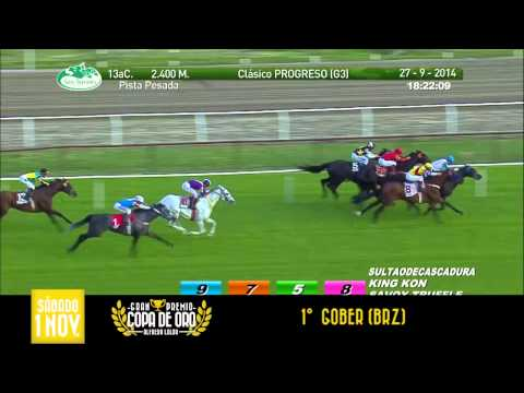 Hipodromo San Isidro - Hoy 17/01 Gulfstream Park - Live en https://secure.xbglobal.com