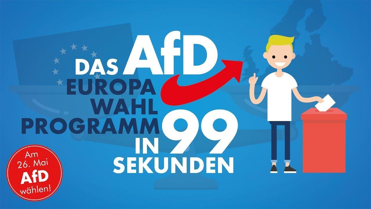 Das AfD-Programm zur Europawahl in 99 Sekunden!