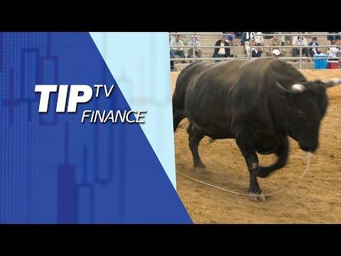 Bullish on equities in short-term - VectorVest