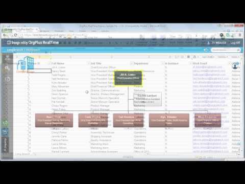 Chart your Employee Data in OrgPlus RealTime