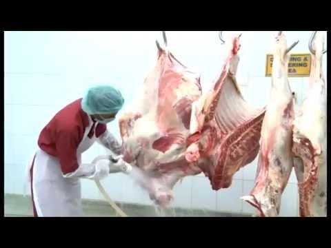 Tazij Meats & Food, Pakistan