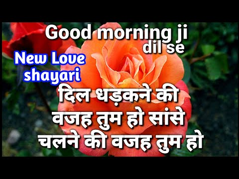Good Morning Wallpaper | Good Morning Photo | Good Morning Love Shayari