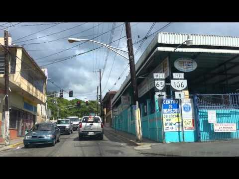Mayaguez, Calle Liceo