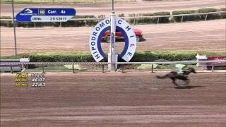 Vidéo de la course PMU PREMIO EL SIMPLISTA