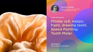 Моляр зуб, макро. Paint, drawing teeth. Speed Painting. Tooth Molar.