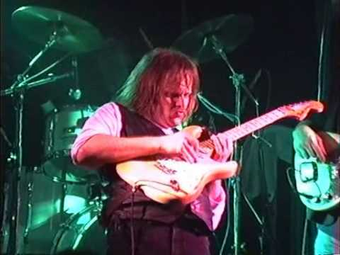 Walter Trout (Live, Neede Holland, 1990): Hey Joe