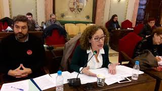 Pleno noviembre 2017 -  Plan Municipal de Accesibilidad