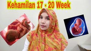 Kehamilan Dan Perkembangan Janin Ukuran 17 S/d 20 Minggu