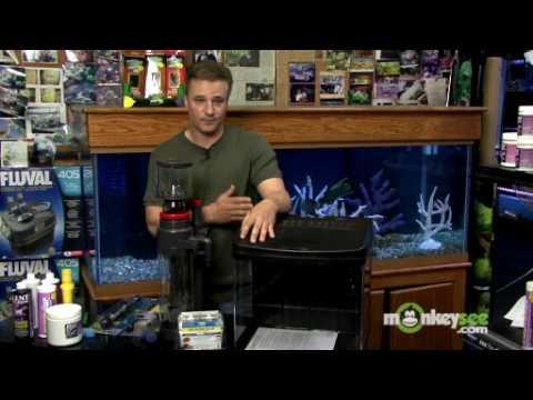 Saltwater Aquarium - Essential Equipment