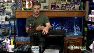 Saltwater Aquarium - Essential Equipment