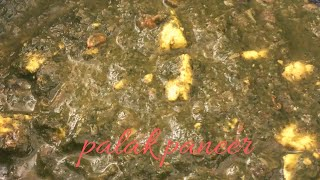 Palak paneer quick recipe/Make it super tasty in healthy way/cottage cheese and spinach recipe.