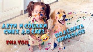 Лучшие Приколы 2019 2020 Дети развлекаются с собаками Смешные видео funny videos challenge