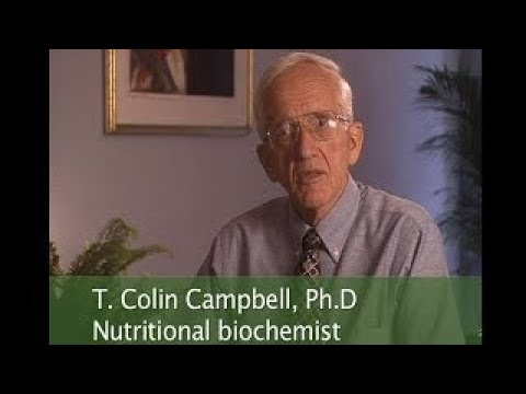 T. Colin Campbell Interview The China Study at Hippocrates Health Institute