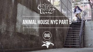 Animal House NYC - Part 5 - Matt Miller, Dan Lacey & More...