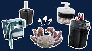 Best Aquarium Filter for Axolotls