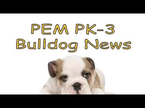 2018-10-26 PEM PK-3 Bulldog News