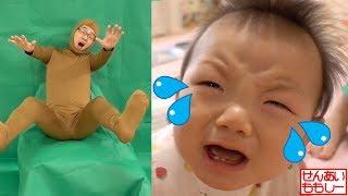 パパ、しーくんを泣かせてしまう(T^T) Dad Make Baby Cry