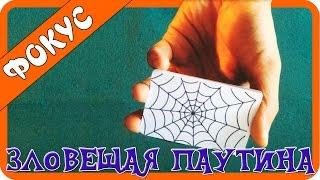 Карточный фокус + обучение (Зловещая паутина)(Видео обучение карточному фокусу