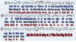 Đáp ca Lễ Đức Mẹ Mân Côi - Lm Thái Nguyên