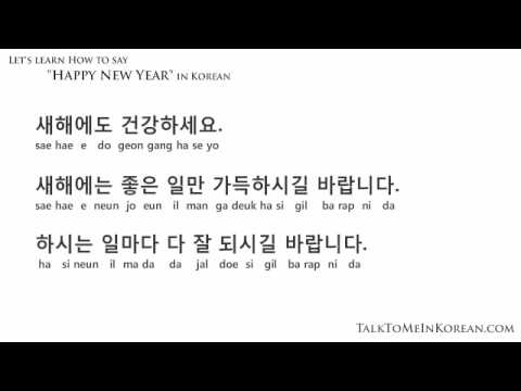 How to wish a Happy New Year in Korean by TalkToMeInKorean.com - YouTube